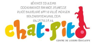 carte visite chat bea